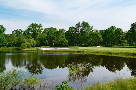 Google review of Blue Heron Pines Golf Club by David Pickett