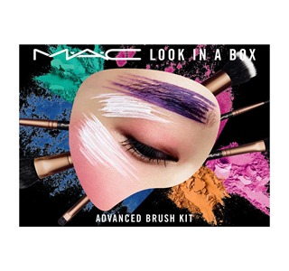 Look In A Box Advanced Brush Kit1