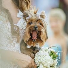 Wedding photographer Renata Xavier (renataxavier). Photo of 27.07.2017
