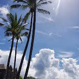 06-19-13 Hanauma Bay, Waikiki - IMGP7480.JPG