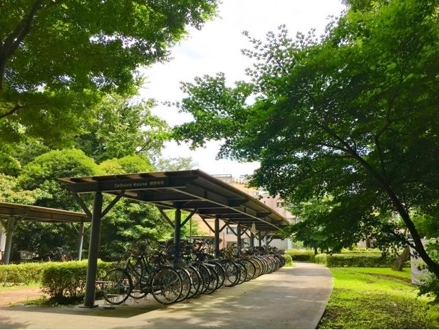 Transferring to the International Christian University in Tokyo?
