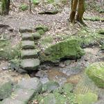 Rocky steps on Ferndale Loop (56030)