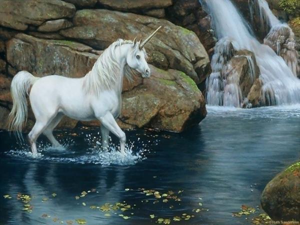 Faithful Creature, Spirit Companion 4