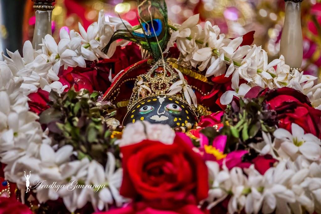 ISKCON Mayapur Deity Darshan 13 Jan 2017 (28)