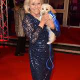 OIC - ENTSIMAGES.COM - Sue Barker at the  Collars & Coats Gala Ball London Thursday 12th November 2015 2015Photo Mobis Photos/OIC 0203 174 1069