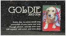 custom photo granite pet memorial marker