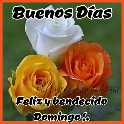 tierna amistad dios te bendiga en este nuevo día