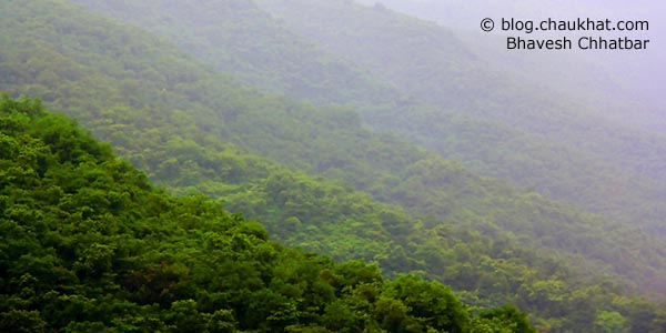The beautiful forest that surrounds the reservoir of Temghar dam on way to Lavasa from Pune — truly picturesque