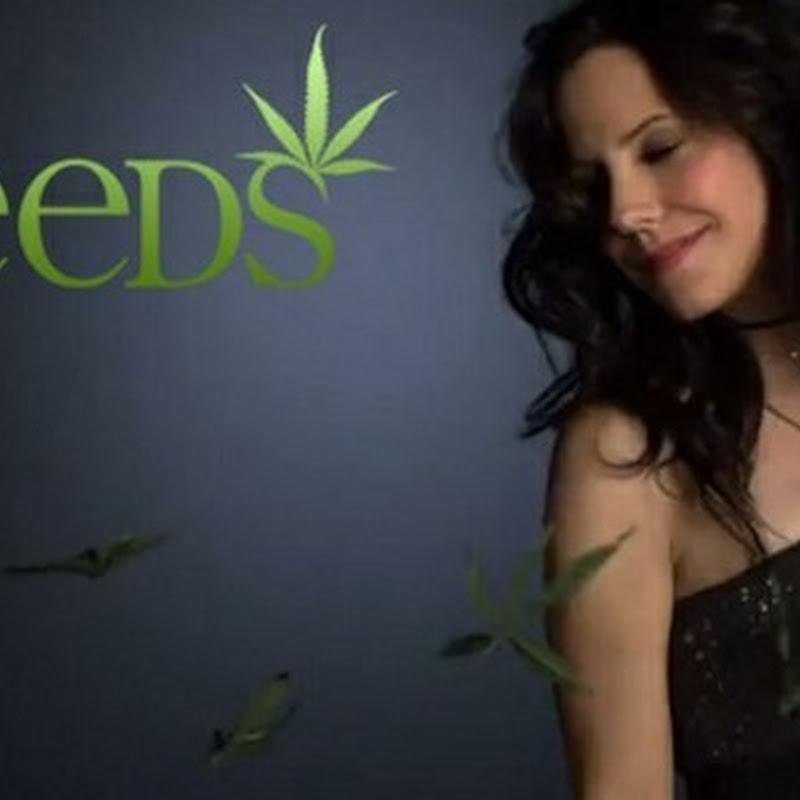 Weeds acclamata darkcomedy a stelle e strisce profondamente oltraggiata dalla tv italiana (7a stagione).