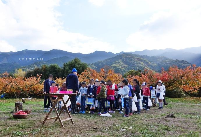 55日本九州自由行 日本威尼斯 柳川遊船  蒸籠鰻魚飯  みのう山荘-若竹屋酒造場