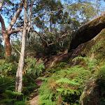 Near the main cave on Kanning Walk (233514)