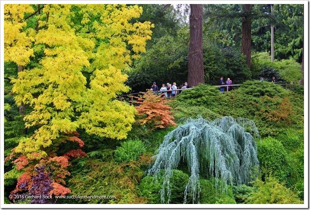 160906_Butchart_Gardens_0056