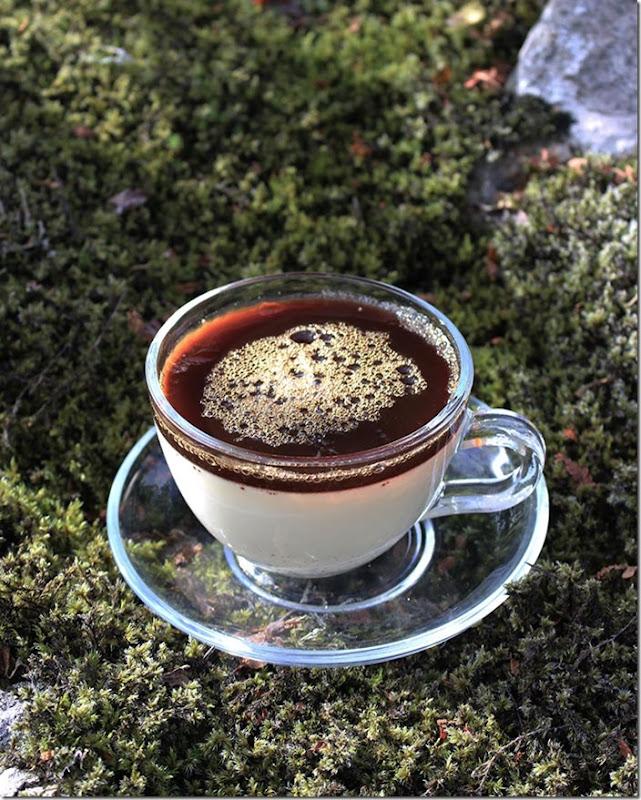 Närbild på kaffekoppen med fat av glas fylld med vanilj-pannacotta dekorerad med kaffe-gele på mossbetäckta stenar.