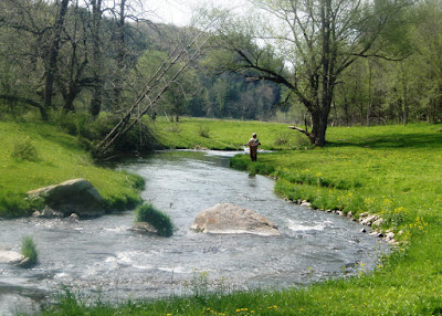 Spring Creek in May