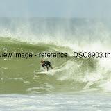 _DSC8903.thumb.jpg