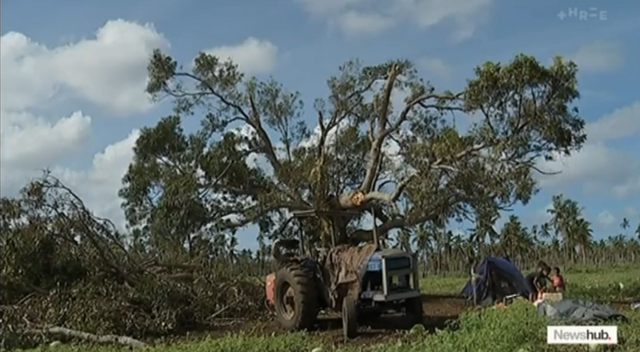 A tree in Tonga that was damaged by Cyclone Gita, 18 February 2018. Tongan farms were devastated by Cyclone Gita. Photo: Newshub