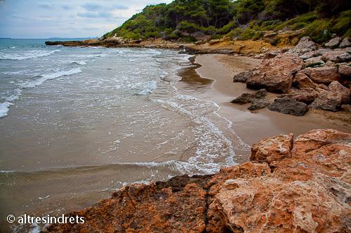 El Bosque De La Marquesa Un Lugar Especial Y Solitario De La Costa Dorada Tarragona Altres Indrets