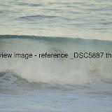 _DSC5887.thumb.jpg