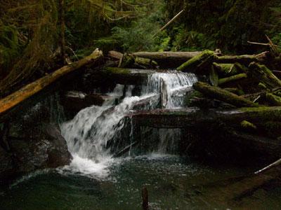 Madeline Creek