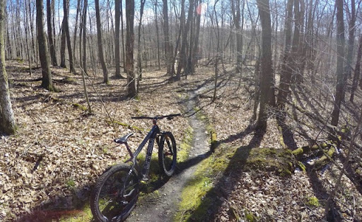 Singletrack in great shape after drying out from snow earlier in the week. April 28th, 2017.
