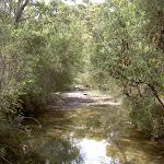 America Bay Track past creek (30497)