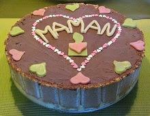 Gâteau glacé au chocolat et à la vanille