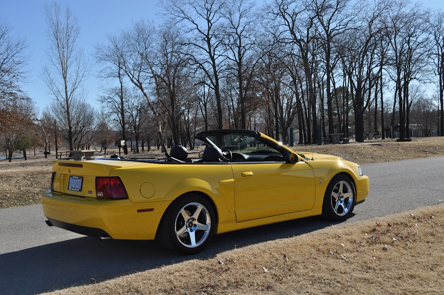 2004 mustang cobra terminator for sale screaming yellow convertible. Black Bedroom Furniture Sets. Home Design Ideas