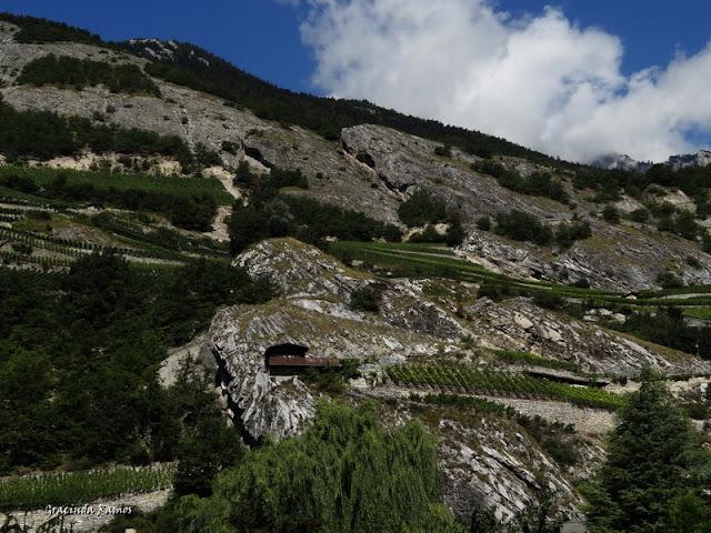 passeando - Passeando pela Suíça - 2012 - Página 9 DSC02097
