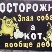 Кукуй Синебрюхофф