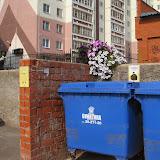 Цветы и правила у контейнерной площадки призывают окружающих быть аккуратными