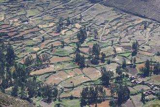 """Photo: Tablero de campos en el valle """"Alturas"""" del valle del Urubamba"""