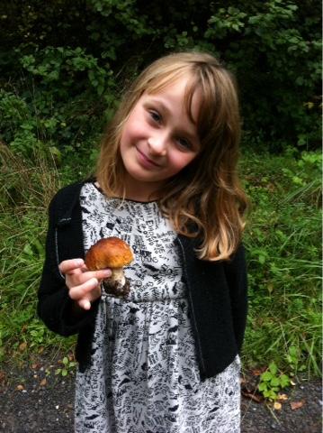 Peut-on cueillir des champignons avec les enfants ?