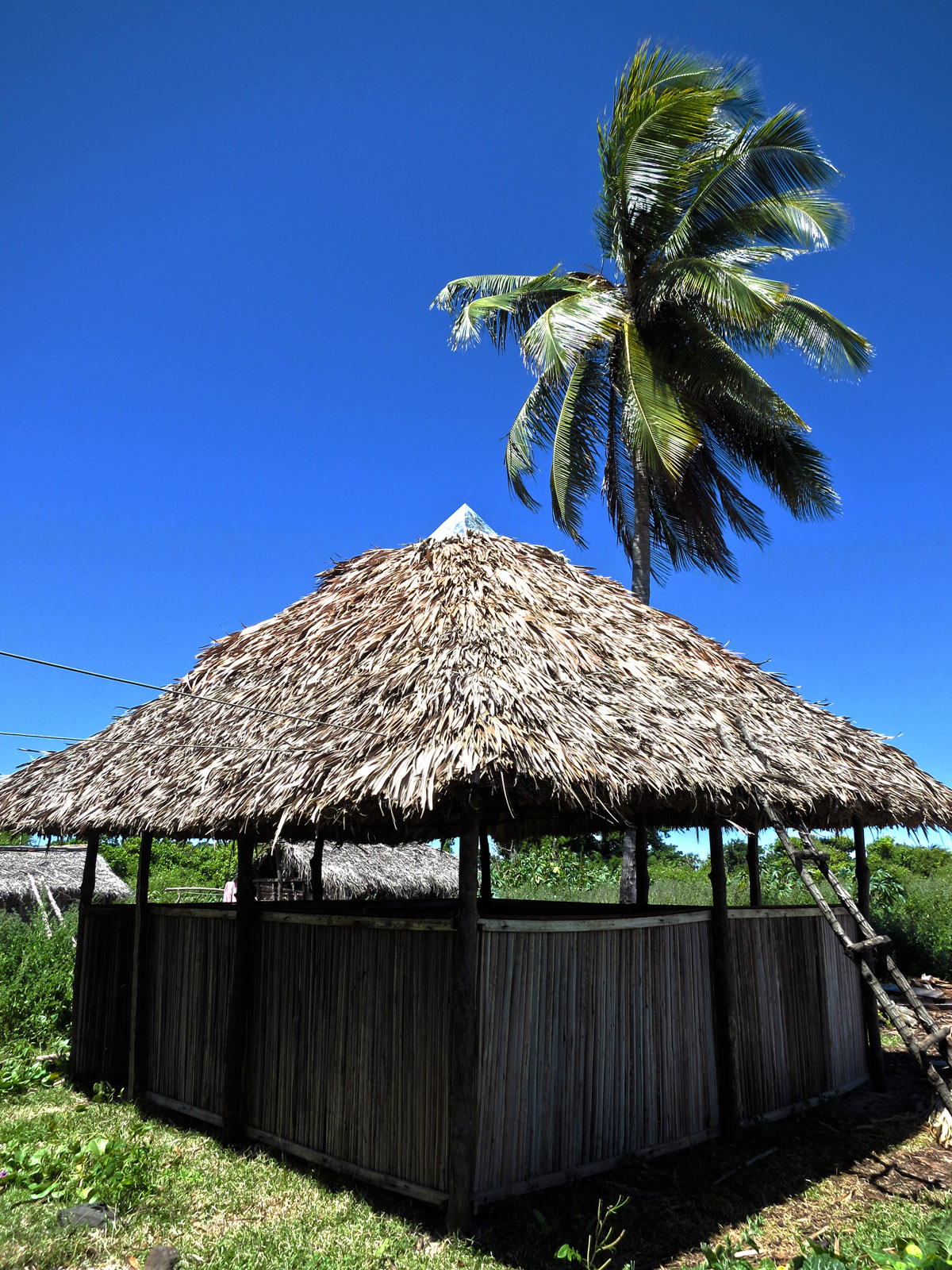 Madagascar9-058.jpg
