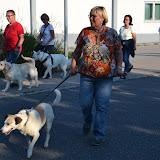 On Tour in Tirschenreuth: 30. Juni 2015 - DSC_0012.JPG