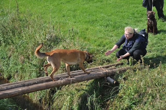 Survival voor Baas en Hond 2012 - DSC_0295.JPG