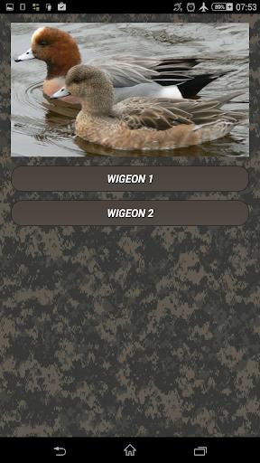 Duck hunting calls screenshots 2