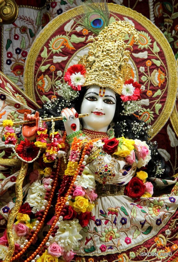 ISKCON Juhu Sringar Deity Darshan on 2nd Jan 2017 (8)