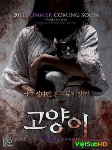 Bí Ẩn Mèo Hoang