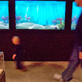 Houston Museum of Natural Science, Sugar Land - 114_6696.JPG