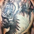 man full back - Lion Tattoos & Tiger Tattoo