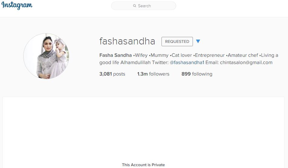 akaun instagram fasha sandha.png