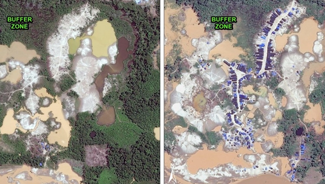 Since November 2015, a major gold mining camp has been established within Tambopata National Reserve's buffer zone in Peru. Data from WorldView-2 de Digital Globe (NextView). Photo: MAAP