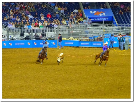Houston Rodeo and Concert