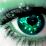 blogger forex's profile photo