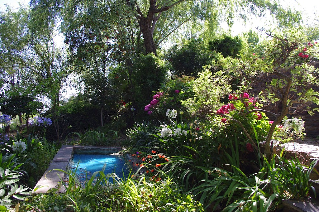 5-Jardin-Estanque