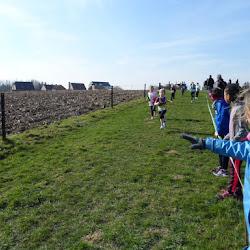 2016 02 28 - Veldloop te Lennik