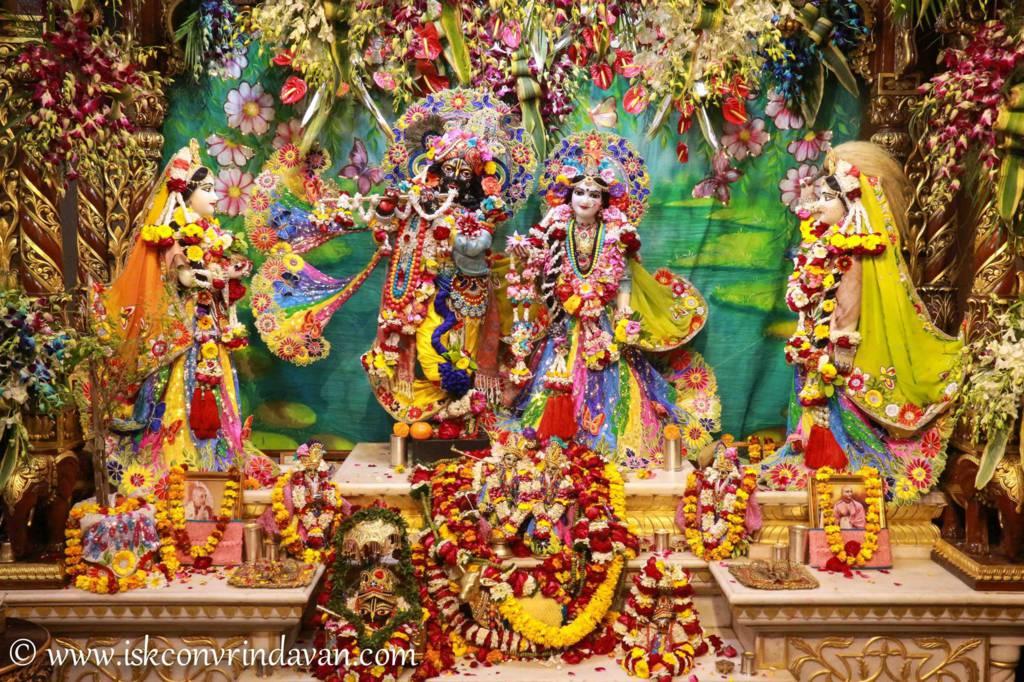 ISKCON Vrindavan Sringar Deity Darshan 26 Feb 2016 (8)