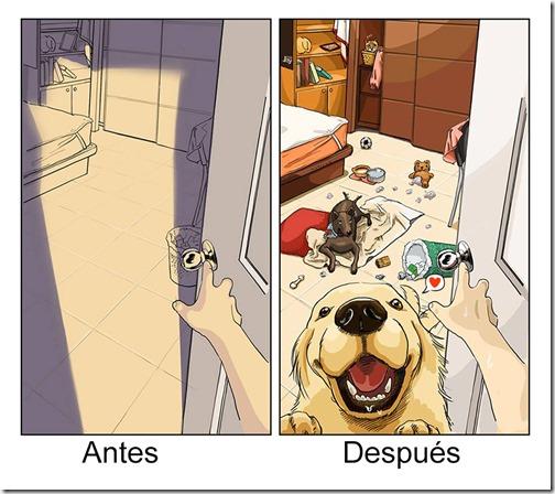 antes y despues de tener   perro (1)