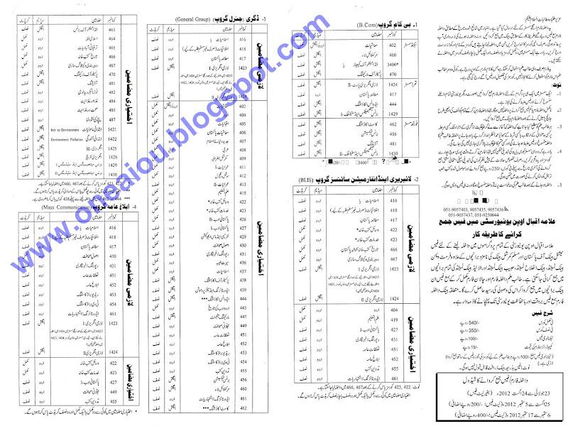 holidays essay examples urdu