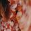 Vanessa Hellmann's profile photo